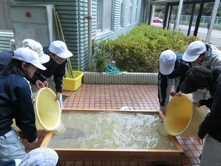 紙すき:大きな木の型枠に竹紙の原料を流し込み,乾燥させれば竹紙のできあがり