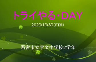 41 兵庫県西宮市立学文中学校